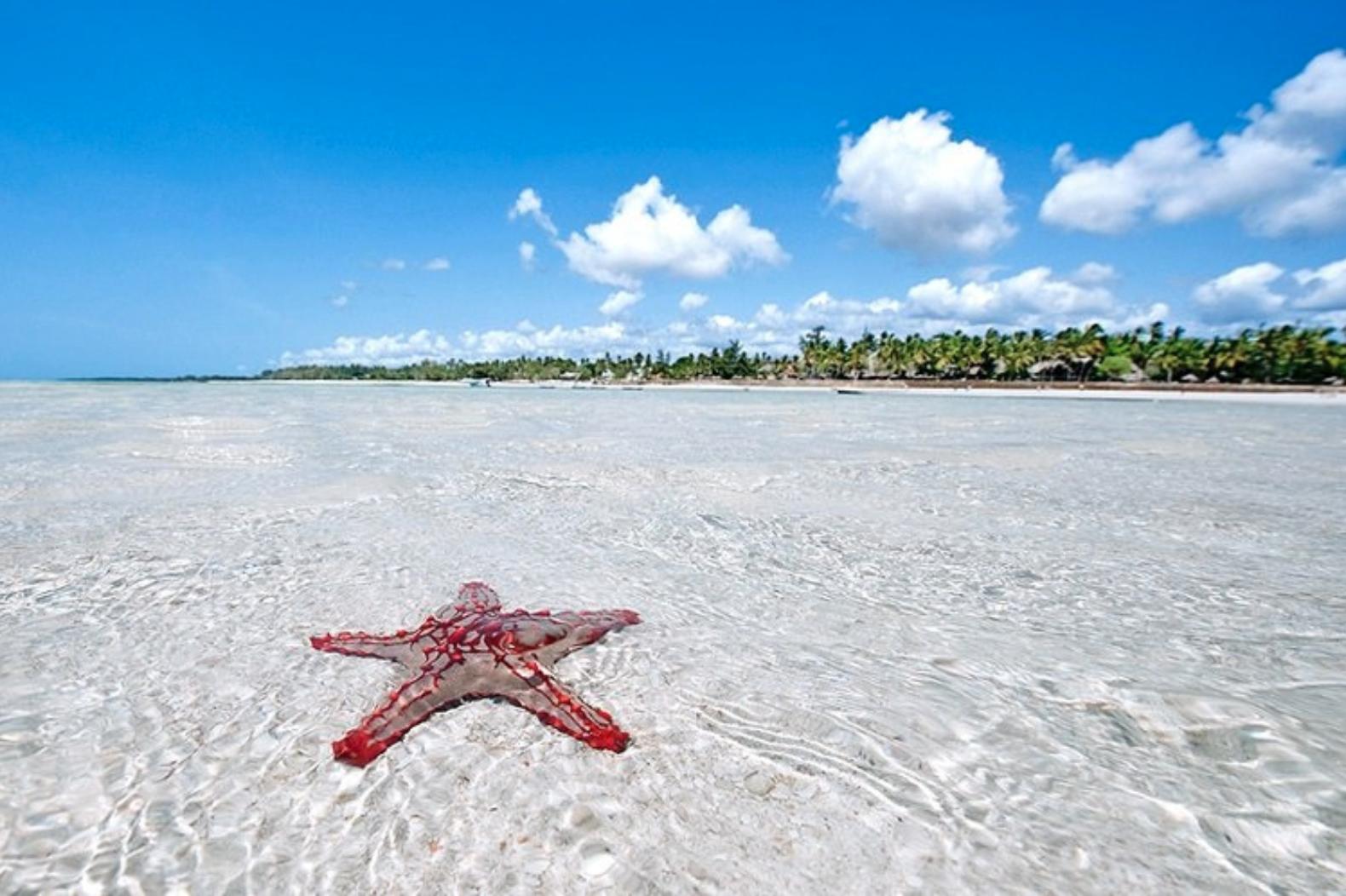 vacanze invernali vacanza al mare watamy kenya