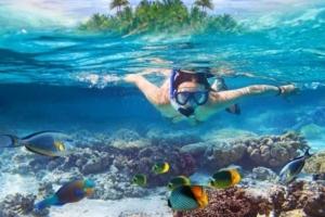 Snorkeling viaggio a Sharm