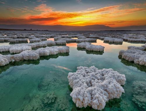 """""""Dalle profondità fino alle stelle"""": rigenerarsi nel Mar Morto."""