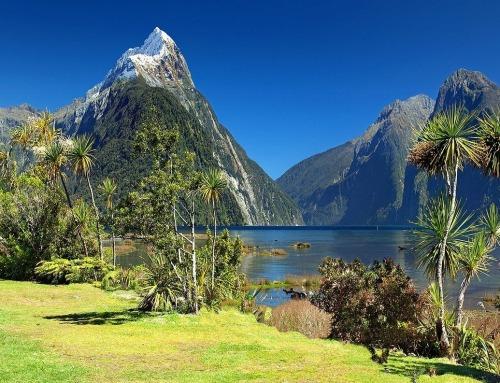 Nuova Zelanda: Inseguendo le stelle… fino agli antipodi!