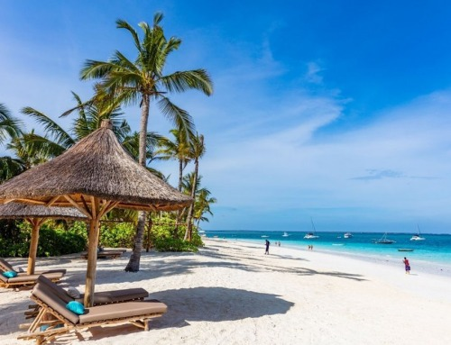 Zanzibar: esclusive vacanze tropicali sulle isole delle spezie